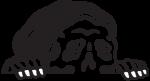 Sketchy Tank Promo Codes & Deals 2021
